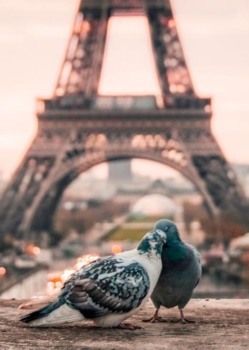 Relais Hotel du Vieux Paris - Romance